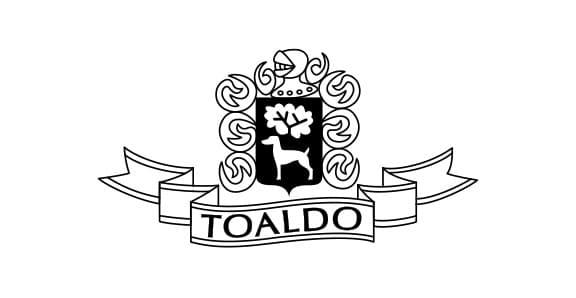 promo-row1-toaldo-2
